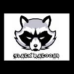 Black Racoons